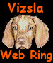 The Vizsla Dog Web Ring Logo (5006 bytes)